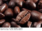 Купить «Кофейные зерна крупным планом», фото № 29595601, снято 29 марта 2009 г. (c) Александр Гаценко / Фотобанк Лори