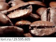 Купить «Кофейные зерна крупным планом», фото № 29595605, снято 29 марта 2009 г. (c) Александр Гаценко / Фотобанк Лори