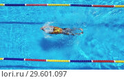 Купить «Woman is swimming in pool during triathlon training», видеоролик № 29601097, снято 18 декабря 2018 г. (c) Andriy Bezuglov / Фотобанк Лори