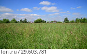 Купить «Beautiful meadow grass in Russia. Rural houses on horizon», видеоролик № 29603781, снято 25 июня 2018 г. (c) Володина Ольга / Фотобанк Лори