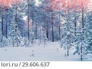 Купить «Winter landscape», фото № 29606637, снято 3 декабря 2018 г. (c) Икан Леонид / Фотобанк Лори