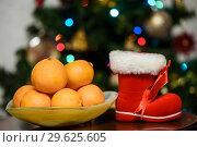 Купить «Новый год. Мандарины и красный сапог на фоне новогодней ёлки», эксклюзивное фото № 29625605, снято 29 декабря 2018 г. (c) Игорь Низов / Фотобанк Лори