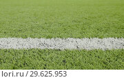 Купить «White line of the soccer field. Close-up horizontal slider shot», видеоролик № 29625953, снято 2 октября 2018 г. (c) Dzmitry Astapkovich / Фотобанк Лори