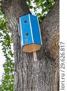 Купить «Wooden bird house hanging from a tree with leaves», фото № 29626817, снято 15 сентября 2018 г. (c) FotograFF / Фотобанк Лори