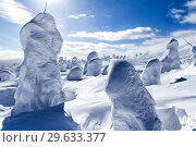 Купить «Beautiful winter wonderland during the sunny day. Winter landscape», фото № 29633377, снято 14 марта 2015 г. (c) Евгений Ткачёв / Фотобанк Лори