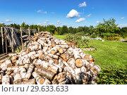 Купить «Big pile of dry birch firewood, chopped down trees at the forest», фото № 29633633, снято 14 августа 2017 г. (c) FotograFF / Фотобанк Лори