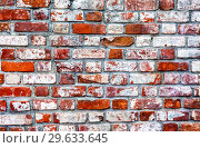 Купить «Grunge weathered red brick wall as background», фото № 29633645, снято 10 июня 2018 г. (c) FotograFF / Фотобанк Лори