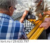 Купить «Шахматная партия на парковой скамейке», фото № 29633797, снято 12 августа 2018 г. (c) Вячеслав Палес / Фотобанк Лори
