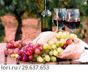 Купить «glass of red wine ripe grapes and bread in vineyard», фото № 29637653, снято 11 сентября 2017 г. (c) Татьяна Яцевич / Фотобанк Лори