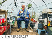 Купить «George Kyle, Plot 71, Eglinton Growers Allotments, Kilwinning, Ayrshire, Scotland, UK.», фото № 29639297, снято 19 июня 2018 г. (c) age Fotostock / Фотобанк Лори