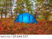 Купить «A tourist blue tent stands on the edge of a forest on bright autumn foliage.», фото № 29644537, снято 7 сентября 2018 г. (c) Акиньшин Владимир / Фотобанк Лори