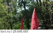 Купить «Red flags of USSR of May 9», видеоролик № 29645681, снято 12 мая 2016 г. (c) Потийко Сергей / Фотобанк Лори
