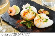 Купить «Roasted sepia served with shrimps», фото № 29647177, снято 18 января 2019 г. (c) Яков Филимонов / Фотобанк Лори