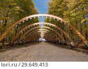 Sokolniki park, sunny autumn day wooden arch. Стоковое фото, фотограф Фотограф / Фотобанк Лори