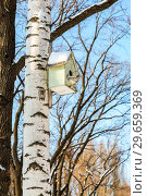 Купить «Wooden birdhouse on a birch tree in the winter park», фото № 29659369, снято 23 февраля 2018 г. (c) FotograFF / Фотобанк Лори