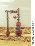Купить «Wellheads with valve armature on a oil field», фото № 29665517, снято 24 мая 2016 г. (c) bashta / Фотобанк Лори