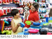 Family choosing dogs accessories. Стоковое фото, фотограф Яков Филимонов / Фотобанк Лори