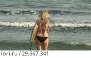 Купить «Woman with Surfboard», видеоролик № 29667341, снято 24 января 2019 г. (c) Wavebreak Media / Фотобанк Лори