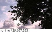 Купить «Autumn Sky», видеоролик № 29667553, снято 22 июля 2019 г. (c) Wavebreak Media / Фотобанк Лори