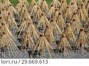 Купить «Thailand, Chiang Mai Province, Bor Sang. Umbrella factory.», фото № 29669613, снято 29 октября 2018 г. (c) age Fotostock / Фотобанк Лори