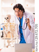 Купить «Young male doctor with skeleton», фото № 29672705, снято 5 ноября 2018 г. (c) Elnur / Фотобанк Лори