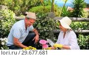 Купить «Senior couple doing some gardening», видеоролик № 29677681, снято 6 ноября 2010 г. (c) Wavebreak Media / Фотобанк Лори