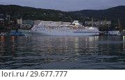 Купить «Ночной вид на круизный лайнер Pacific Venus в морском порту», видеоролик № 29677777, снято 7 сентября 2018 г. (c) А. А. Пирагис / Фотобанк Лори