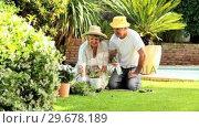 Retired couple working in garden. Стоковое видео, агентство Wavebreak Media / Фотобанк Лори