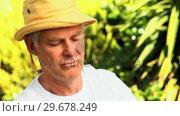 Retired man potting a plant. Стоковое видео, агентство Wavebreak Media / Фотобанк Лори