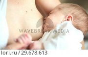 Woman breastfeeding her baby. Стоковое видео, агентство Wavebreak Media / Фотобанк Лори