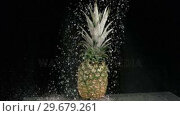 Купить «Water raining on pineapple in super slow motion», видеоролик № 29679261, снято 26 января 2012 г. (c) Wavebreak Media / Фотобанк Лори