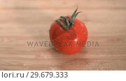 Купить «Wet tomato in super slow motion», видеоролик № 29679333, снято 26 января 2012 г. (c) Wavebreak Media / Фотобанк Лори