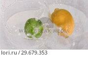 Купить «Fruit falling into water in super slow motion», видеоролик № 29679353, снято 26 января 2012 г. (c) Wavebreak Media / Фотобанк Лори