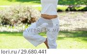 Купить «A woman in the park performing yoga», видеоролик № 29680441, снято 17 ноября 2011 г. (c) Wavebreak Media / Фотобанк Лори