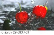 Купить «Many chili peppers falling in water », видеоролик № 29683469, снято 29 февраля 2012 г. (c) Wavebreak Media / Фотобанк Лори