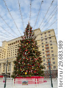 Новогодняя елка на Манежной площади в Москве, Россия (2019 год). Редакционное фото, фотограф Елена Коромыслова / Фотобанк Лори
