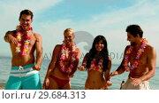 Купить «Friends wearing garlands dancing on the beach», видеоролик № 29684313, снято 26 марта 2013 г. (c) Wavebreak Media / Фотобанк Лори