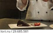 Купить «Chef giving a cake the finishing touch», видеоролик № 29685581, снято 14 августа 2013 г. (c) Wavebreak Media / Фотобанк Лори