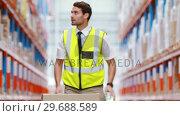Купить «Warehouse workers preparing a shipment», видеоролик № 29688589, снято 23 марта 2016 г. (c) Wavebreak Media / Фотобанк Лори