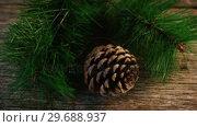 Купить «Pine cone and fir on wooden plank», видеоролик № 29688937, снято 30 августа 2016 г. (c) Wavebreak Media / Фотобанк Лори