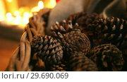 Купить «Close-up of pine cone», видеоролик № 29690069, снято 31 августа 2016 г. (c) Wavebreak Media / Фотобанк Лори
