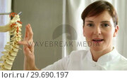 Купить «Female physiotherapist explaining about spine model», видеоролик № 29690197, снято 15 мая 2016 г. (c) Wavebreak Media / Фотобанк Лори