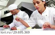 Купить «Chefs garnishing food dish», видеоролик № 29695369, снято 21 ноября 2016 г. (c) Wavebreak Media / Фотобанк Лори