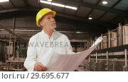 Купить «Worker looking at blue print while examining», видеоролик № 29695677, снято 20 октября 2016 г. (c) Wavebreak Media / Фотобанк Лори