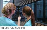 Купить «Two nurses examining an x-ray report in corridor», видеоролик № 29696645, снято 19 ноября 2016 г. (c) Wavebreak Media / Фотобанк Лори