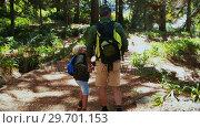 Купить «Father and son hiking with trekking poles», видеоролик № 29701153, снято 2 марта 2017 г. (c) Wavebreak Media / Фотобанк Лори