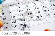 Купить «Fake spider on a calendar with various sweet foods 4k», видеоролик № 29705089, снято 26 мая 2017 г. (c) Wavebreak Media / Фотобанк Лори