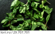 Mint leaves on black background 4k. Стоковое видео, агентство Wavebreak Media / Фотобанк Лори