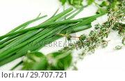 Купить «Various type of herbs on white background 4k», видеоролик № 29707721, снято 5 июня 2017 г. (c) Wavebreak Media / Фотобанк Лори