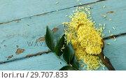 Raw organic yellow rice and curry leaves on wooden table 4k. Стоковое видео, агентство Wavebreak Media / Фотобанк Лори